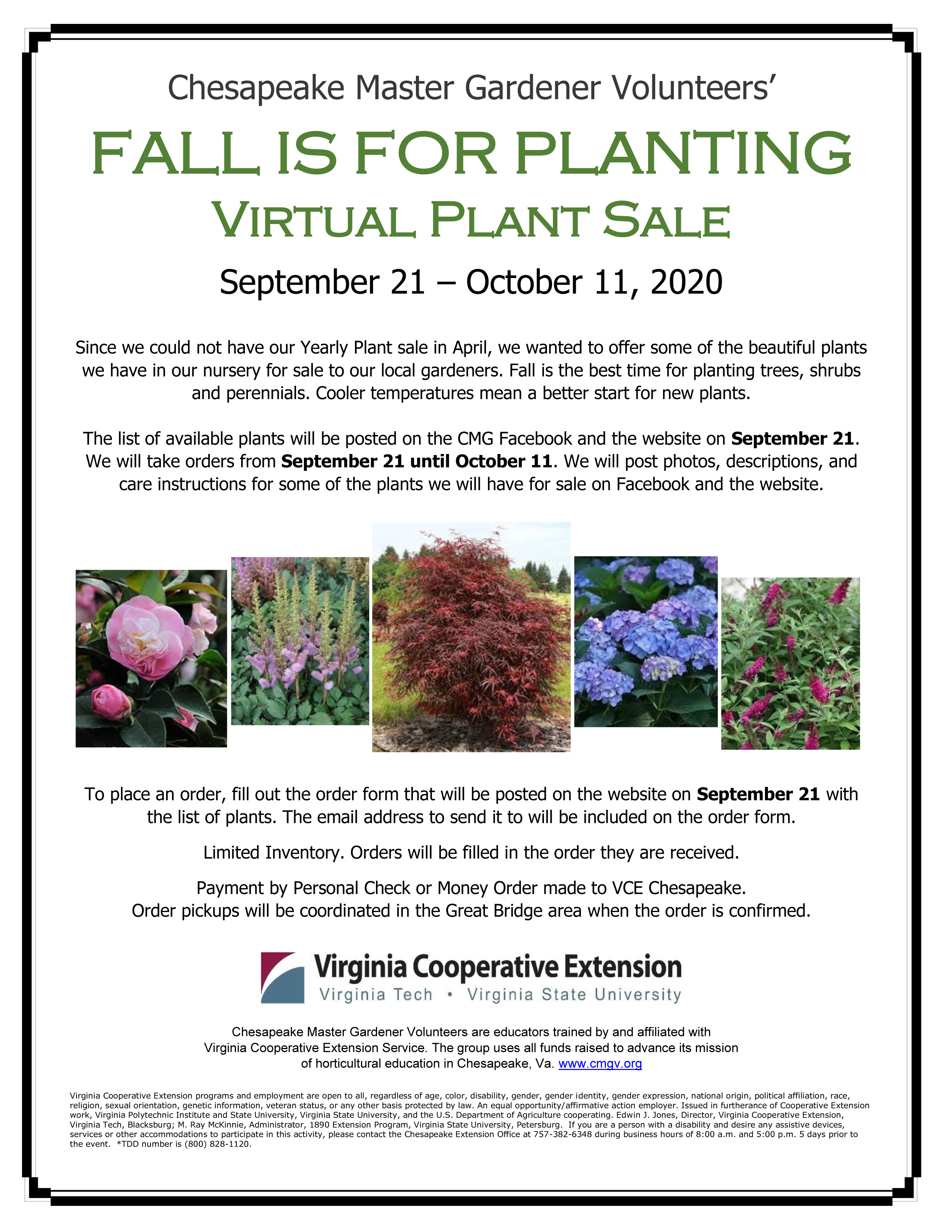 Chesapeake Master Gardeners Virtual Plant Sale Flyer 2020